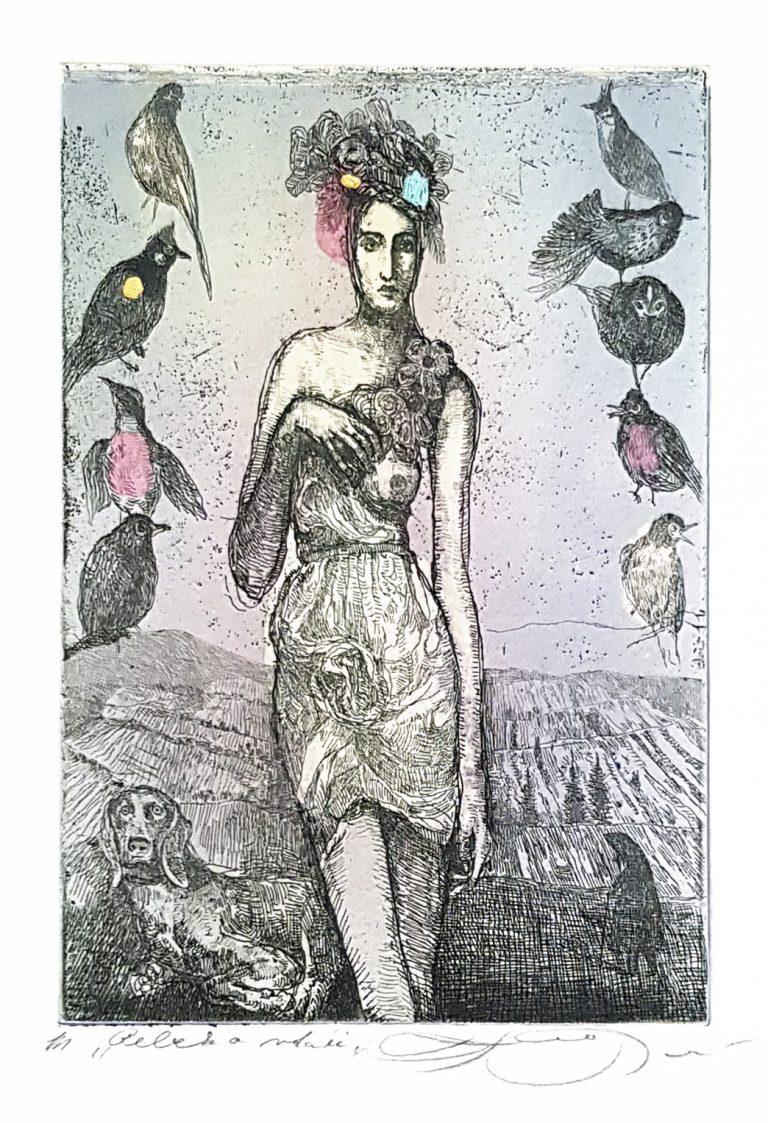 Rebeka A Vtáky, Katarína Vavrová, Galéria Ave, Rámovanie